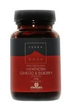 TerraNova Nutrition           Hawthorn Ginkgo & Bilberry   30g