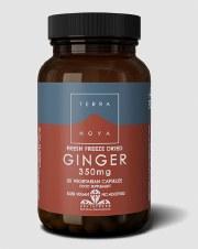 TerraNova Nutrition Ginger 350mg 50 Capsules