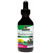 Nature's Answer         Bladderwrack Herb 30 ml