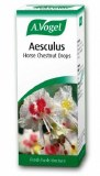 A. Vogel Aesculus Horse Chestnut Oral Drops 50ml