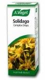 A. Vogel Solidago Oral Drops 50ml