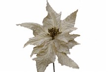 9in Poinsettia Pick Ivory/Gold