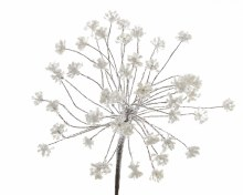 plc hogweed frosted finish