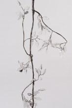 acrylic leaf garland