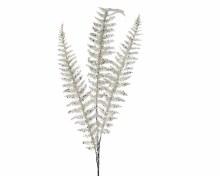 plc fern leaf spray