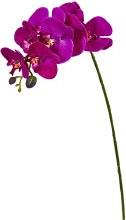 Artificial Phalaenopsis Purple (75cm)