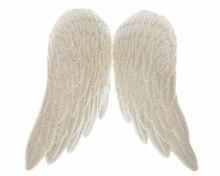 plc angel wings on clip