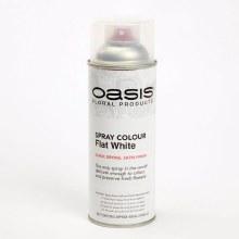 Spray Colour - Flat White