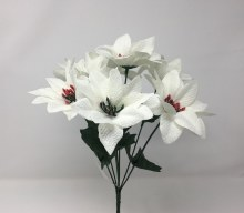 Bush Delux Satin Poinsettia White x7