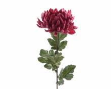 silk chrysanthemum on stem pa