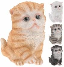 CAT SITTING 165MM 4ASS