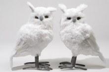 plush owl with glitter 2ass