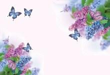 Card Blank - Butterflies Blue Flower