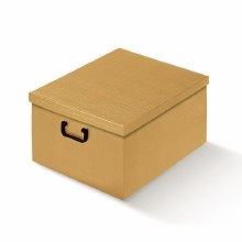 Box with Lid Silk Gold - Seta Oro (40x60x25cm)