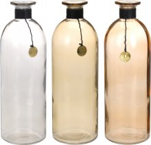 Bottle Glass Assorted (20cm)