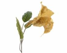 silk trumpet flower on stem m