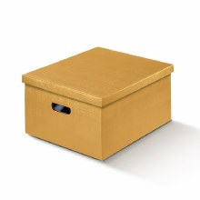 Box with Lid Silk Gold - Seta Oro (34x50x25cm)