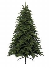 Noble Pine 300cm