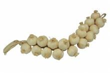 60cm Plastic Garlic String