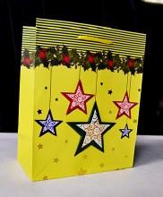 Christmas Bags 32cm x 25cm Gol