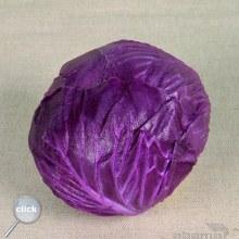 Foam Round Cabbage Red