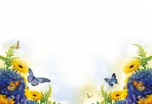 Card Blue and Yellow flower with Butterfly