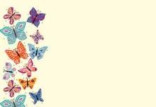 Card Blank - Bright Coloured Butterflies