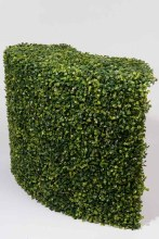 Boxwood Corner Hedge 68x25x50c