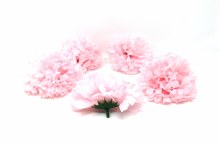 Carnation Heads 24 Dz Light Pink