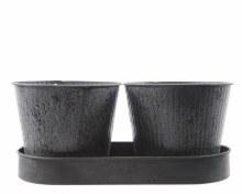 Zinc tray with 2 planters-(25x13cm)(D) x 10,5cm(H)