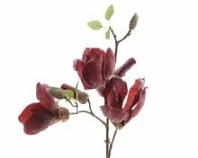 silk magnolia branch w glitter