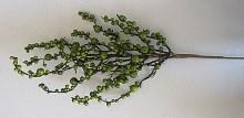 Berry Spray Green 75cm