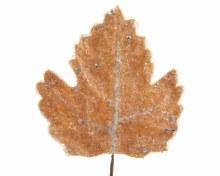 strass stone leaf frozen