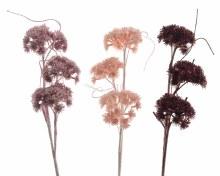 plc coral flower branch 3colas