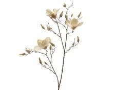 silk magnolia branch velvet w