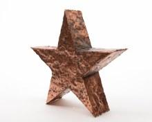 alu star standing