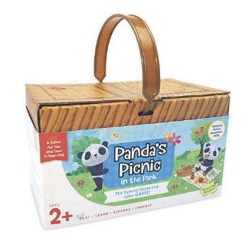 Panda's Picnic in the Park