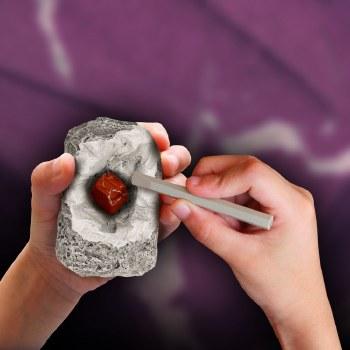 I Dig It! Rocks/Fossils