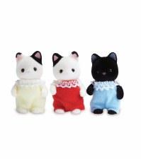 Calico-Tuxedo Cat Triplet