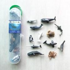 Collect A Box: Sea Animals