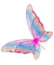 Glitter Rainbow Wings Fuschia - Creative Education of Canada