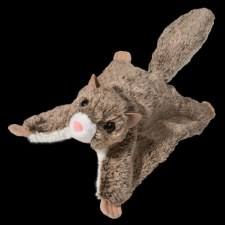 Jumper Flying Squirrel