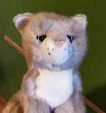 Rita Gray Cat