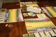 Wingspan Game