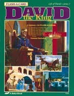 Abeka Flash-a-Cards: David the King (David 3)