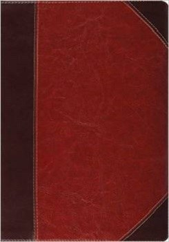 ESV Study Bible - Brown/Cordovan TruTone