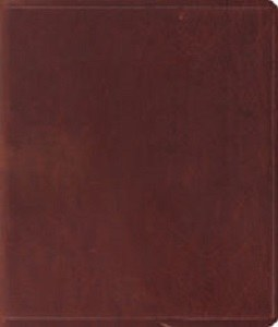 ESV Journaling Bible Brown Leather