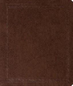 ESV Journaling Bible Mocha