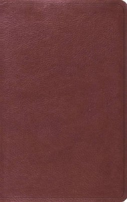 ESV Value Thinline Bible - Burgundy TruTone