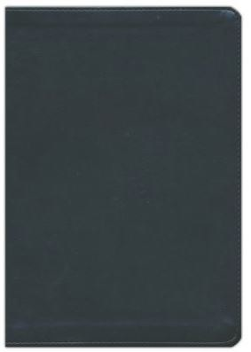 ESV Journaling Bible - Interleaved - Black